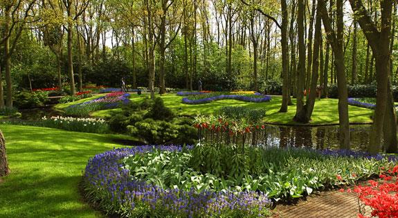 UMBC community garden